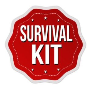 "<span class=""entry-title-primary"">All About Retrogrades</span> <span class=""entry-subtitle"">SURVIVAL KIT</span>"